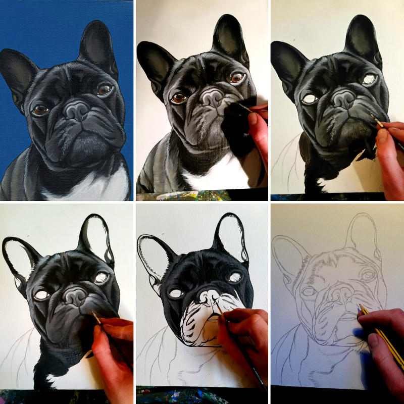 The Dogpainter From Sketch to Painting